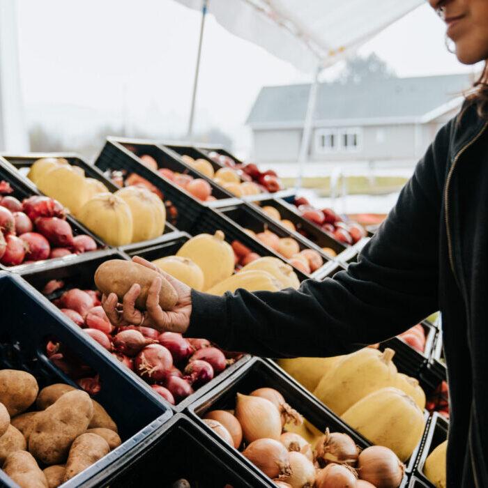 Produce Selection: Marion Polk Food Share